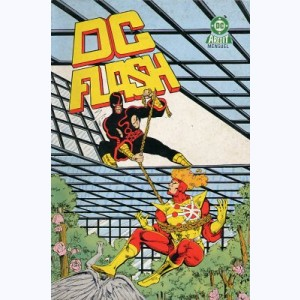 DC Flash : n° 13, Firestorm : Au bout du rouleau